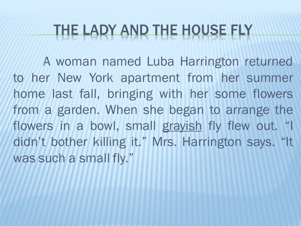 A woman named Luba Harrington returned to her New York apartment from her summer home last fall, bringing with her some flowers from a garden.
