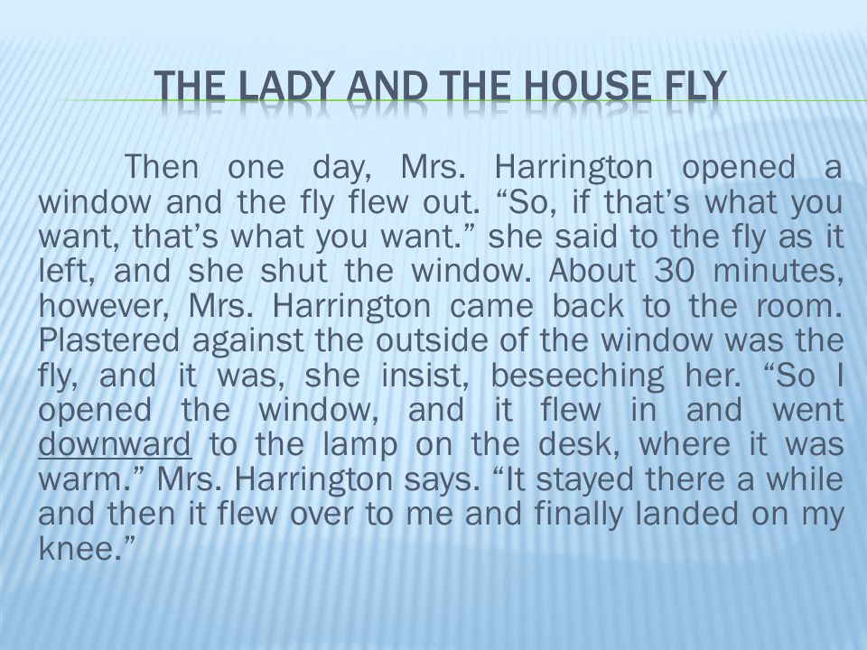 Then one day, Mrs. Harrington opened a window and the fly flew out.