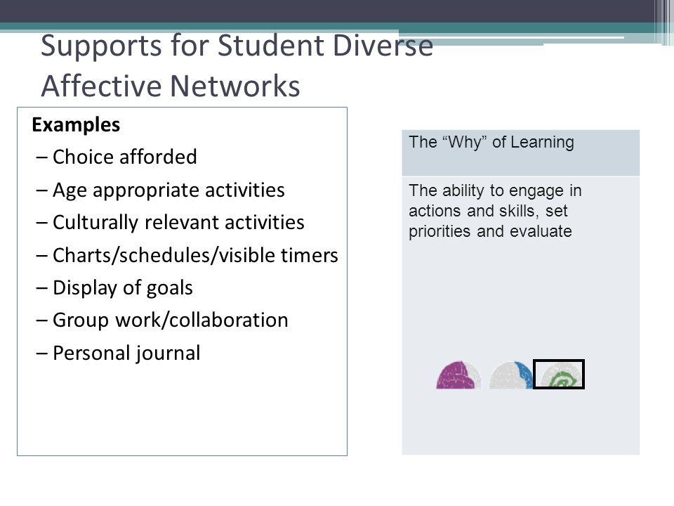 Supports for Student Diverse Affective Networks Examples – Choice afforded – Age appropriate activities – Culturally relevant activities – Charts/schedules/visible timers – Display of goals – Group work/collaboration – Personal journal The Why of Learning The ability to engage in actions and skills, set priorities and evaluate