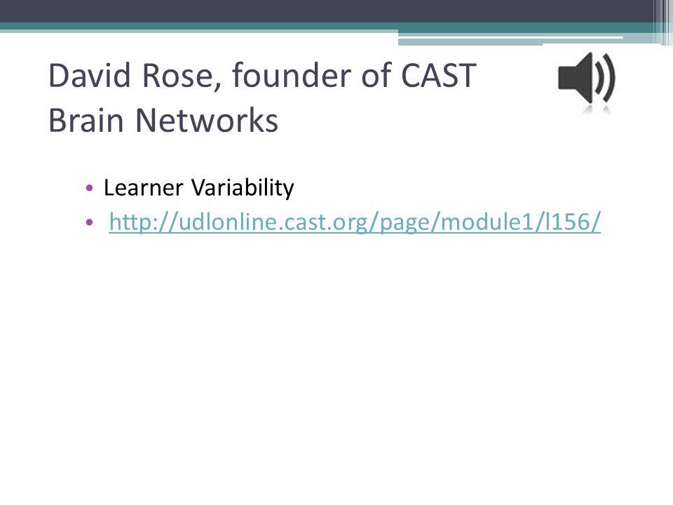 David Rose, founder of CAST Brain Networks Learner Variability http://udlonline.cast.org/page/module1/l156/ 24