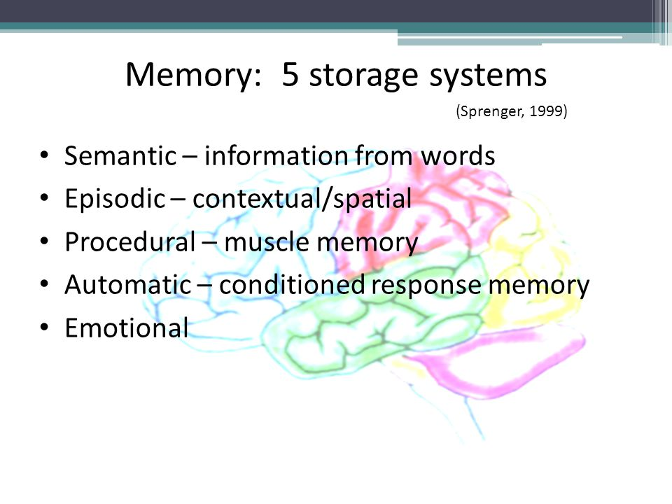 Memory: 5 storage systems Semantic – information from words Episodic – contextual/spatial Procedural – muscle memory Automatic – conditioned response memory Emotional (Sprenger, 1999)