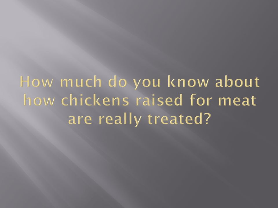 50 billion chickens are raised intensively for their meat annually, worldwide.