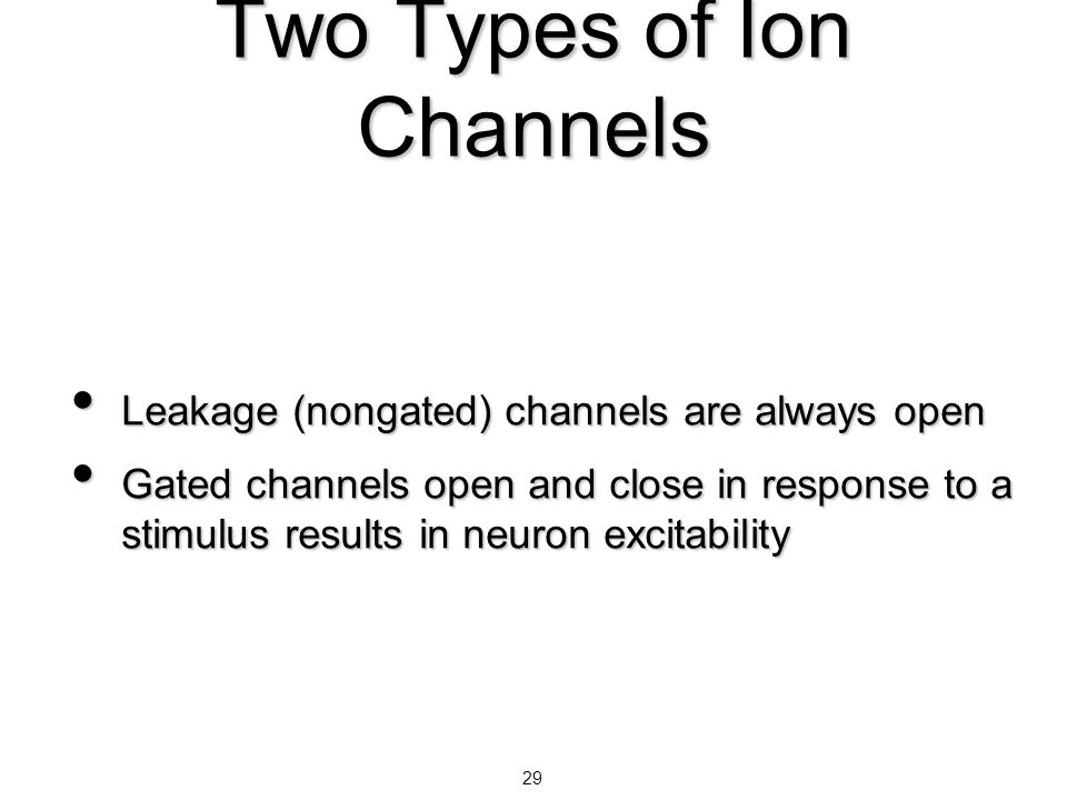 29 Two Types of Ion Channels Leakage (nongated) channels are always open Leakage (nongated) channels are always open Gated channels open and close in