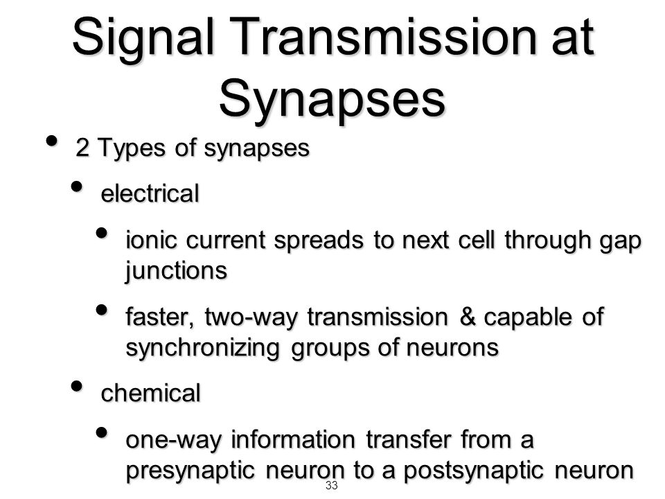 33 Signal Transmission at Synapses 2 Types of synapses 2 Types of synapses electrical electrical ionic current spreads to next cell through gap juncti