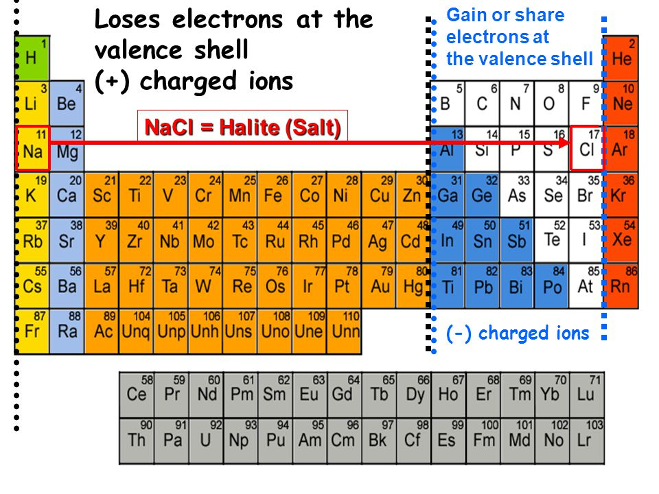 Gain or share electrons at the valence shell NaCl = Halite (Salt) Loses electrons at the valence shell (+) charged ions (-) charged ions