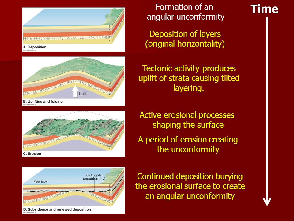 Time Formation of an angular unconformity Deposition of layers (original horizontality) Tectonic activity produces uplift of strata causing tilted lay