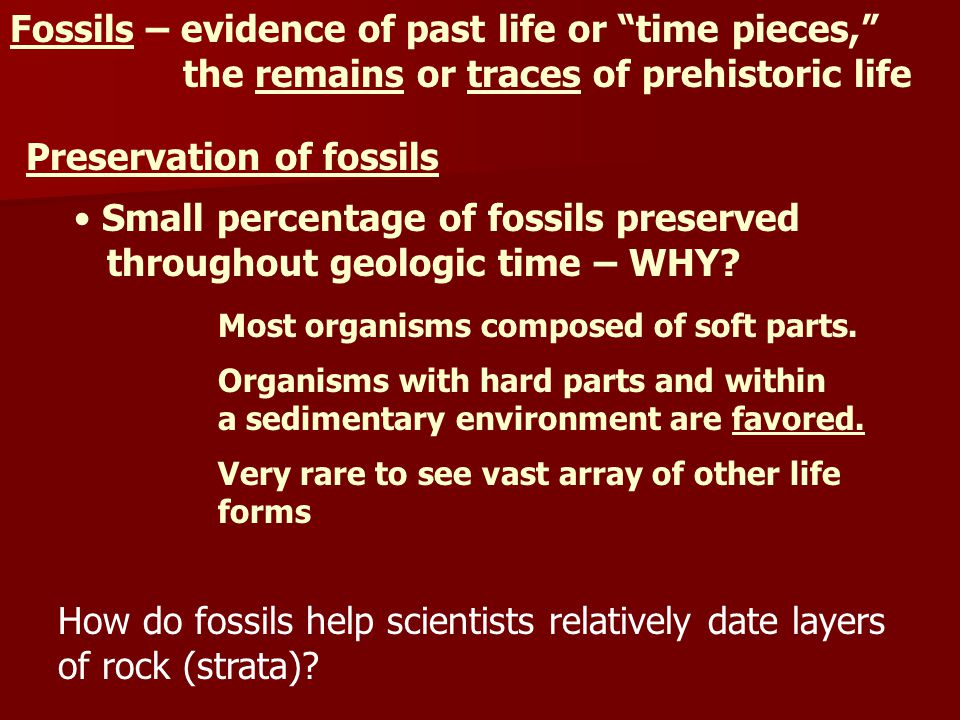 """Fossils – evidence of past life or """"time pieces,"""" the remains or traces of prehistoric life Preservation of fossils Small percentage of fossils preser"""
