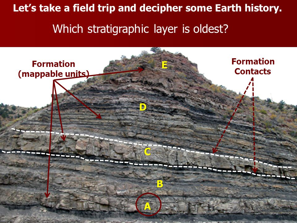 Let's take a field trip and decipher some Earth history. Which stratigraphic layer is oldest? A B C D E Formation (mappable units) Formation Contacts