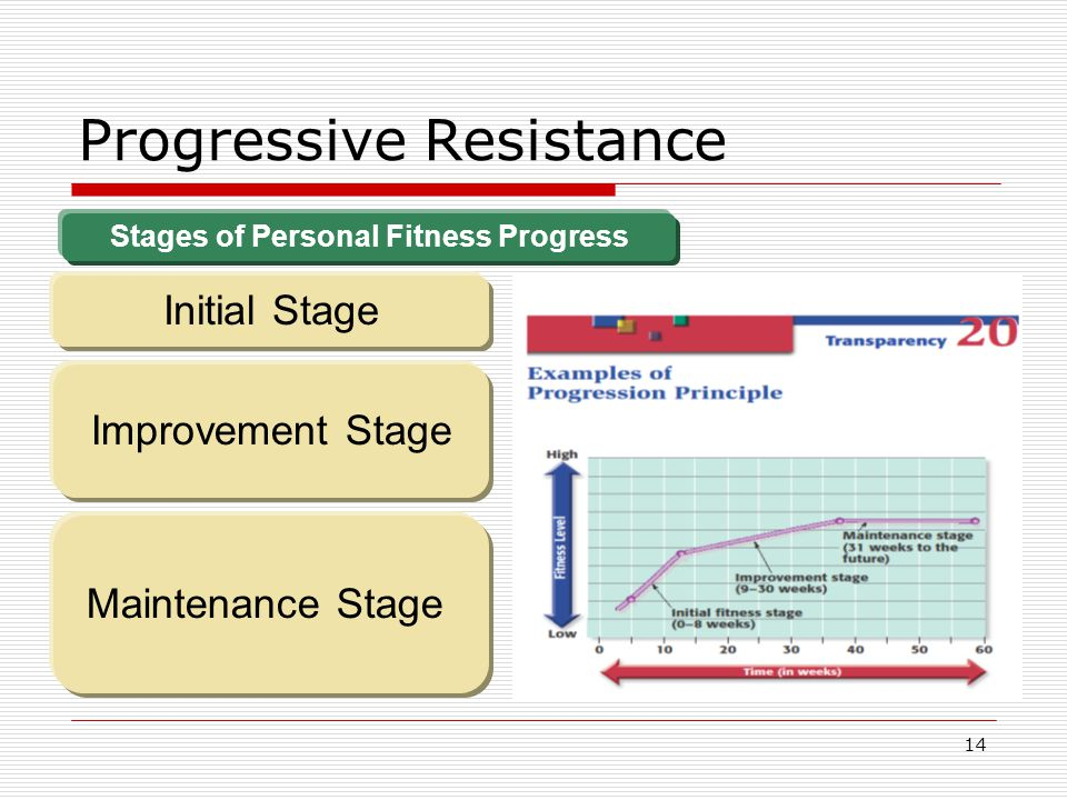 Progressive Resistance Stages of Personal Fitness Progress Initial Stage Improvement Stage Maintenance Stage 14