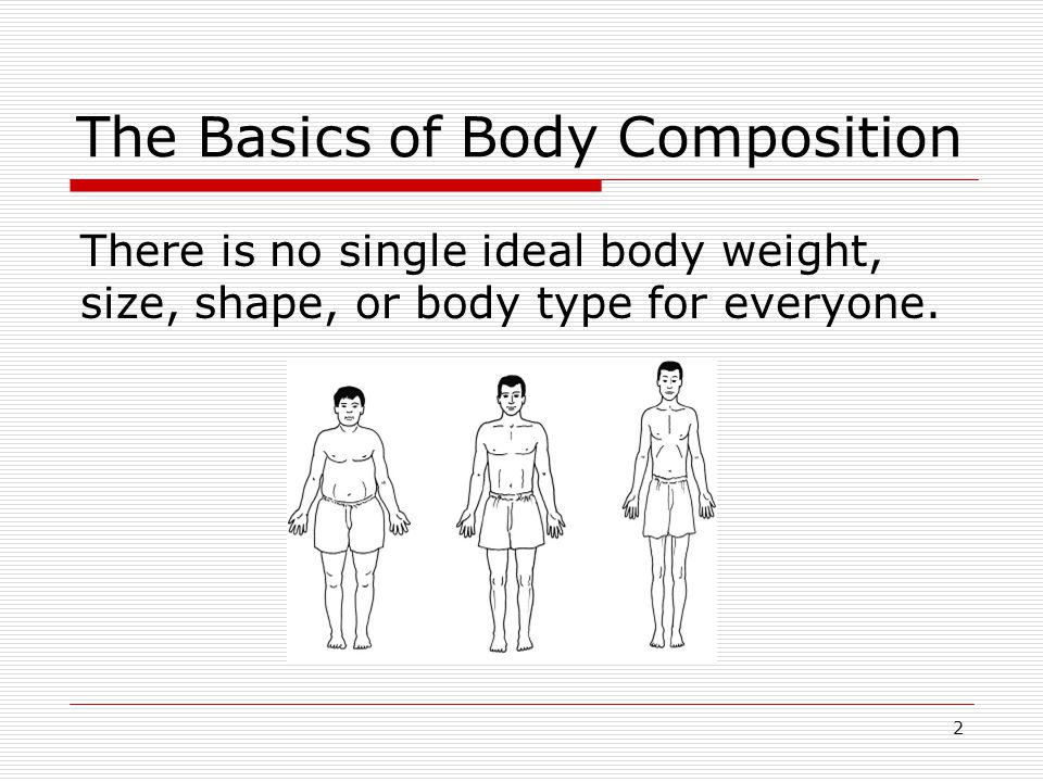 Your Body Type Ectomorph Body type characterized by a low percentage of body fat, small bone size, and a small amount of muscle mass and size.