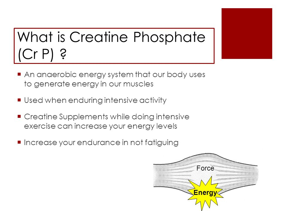 What is Creatine Phosphate (Cr P) .