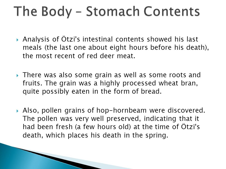  Analysis of Ötzi s intestinal contents showed his last meals (the last one about eight hours before his death), the most recent of red deer meat.