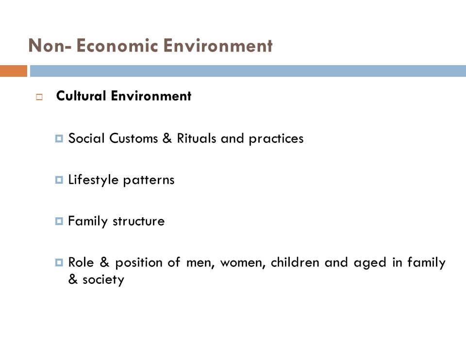 Non- Economic Environment  Cultural Environment  Social Customs & Rituals and practices  Lifestyle patterns  Family structure  Role & position of men, women, children and aged in family & society