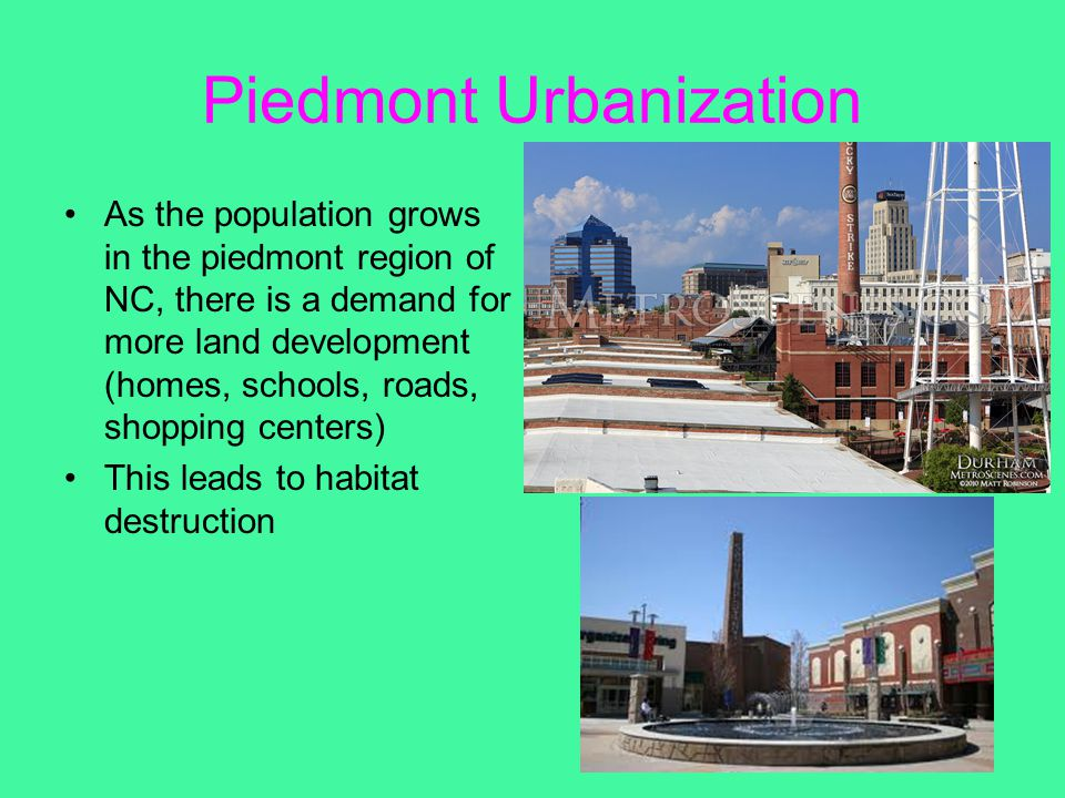 Piedmont Urbanization As the population grows in the piedmont region of NC, there is a demand for more land development (homes, schools, roads, shoppi