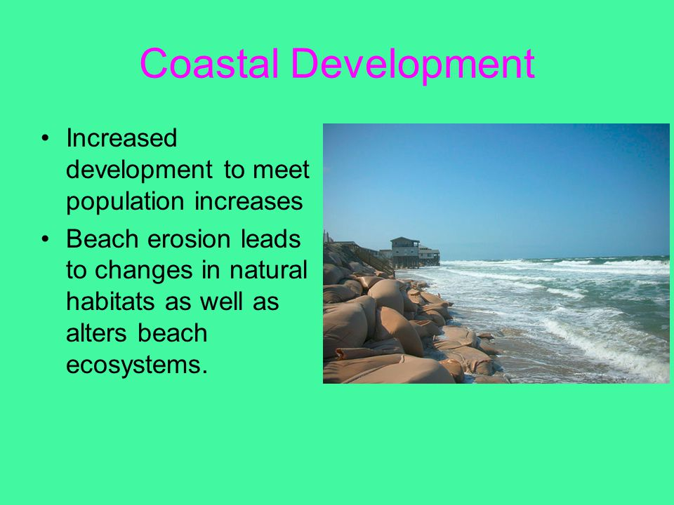 Coastal Development Increased development to meet population increases Beach erosion leads to changes in natural habitats as well as alters beach ecos