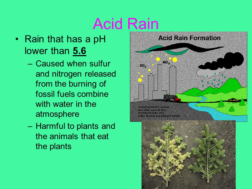 Acid Rain Rain that has a pH lower than 5.6 –Caused when sulfur and nitrogen released from the burning of fossil fuels combine with water in the atmos