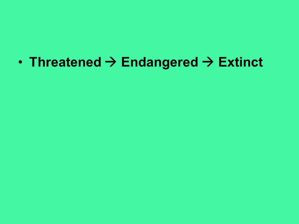 Threatened  Endangered  Extinct