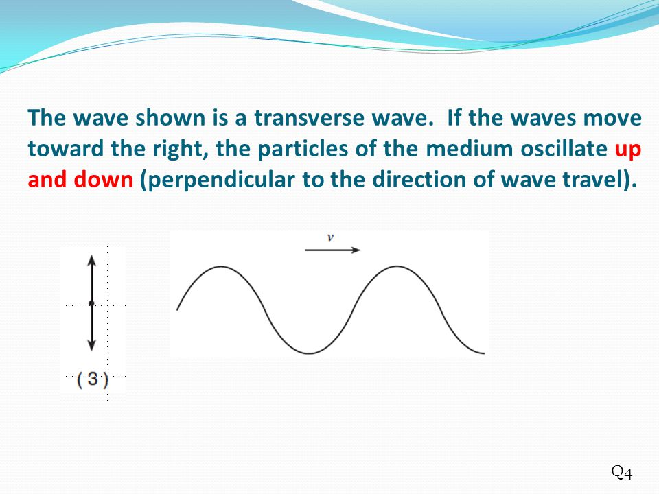 The wave shown is a transverse wave. If the waves move toward the right, the particles of the medium oscillate up and down (perpendicular to the direc