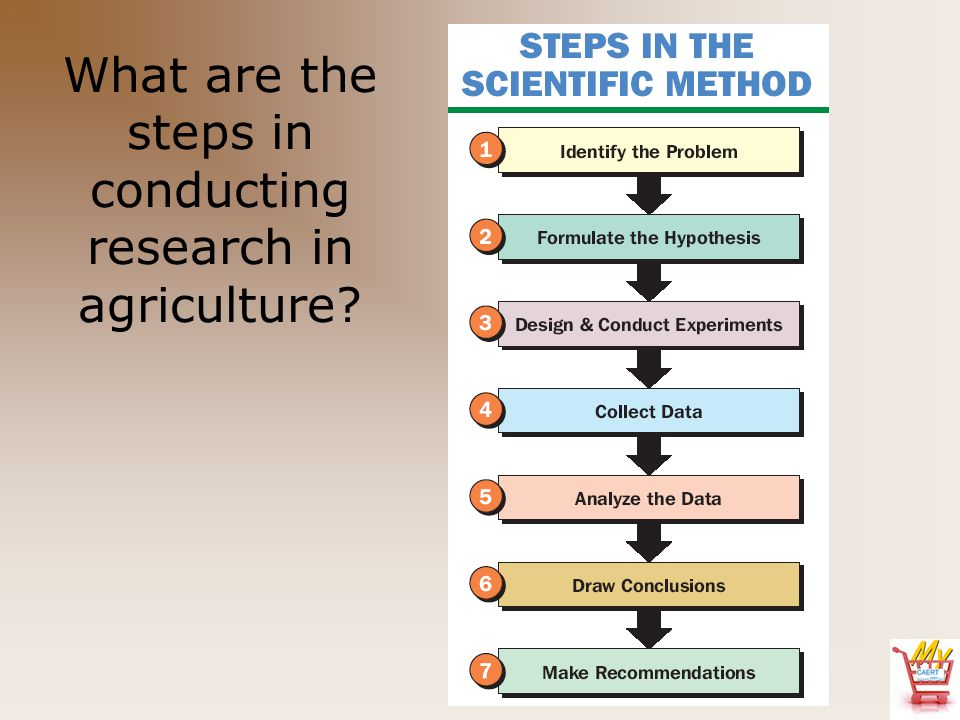 What are the steps in conducting research in agriculture?