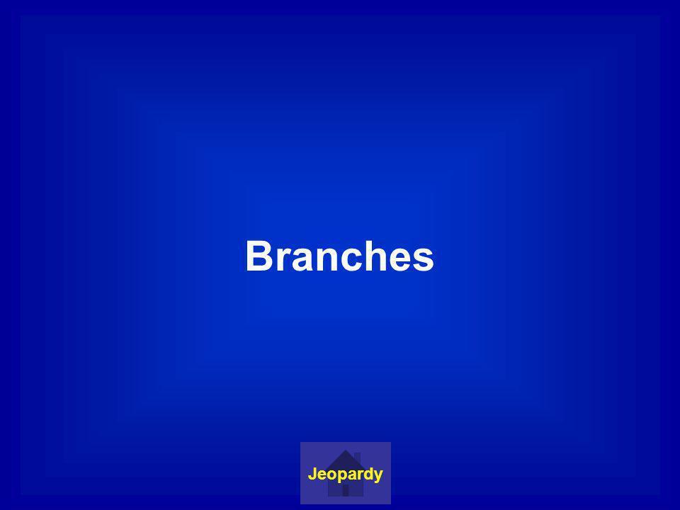 Judicial Branch Jeopardy