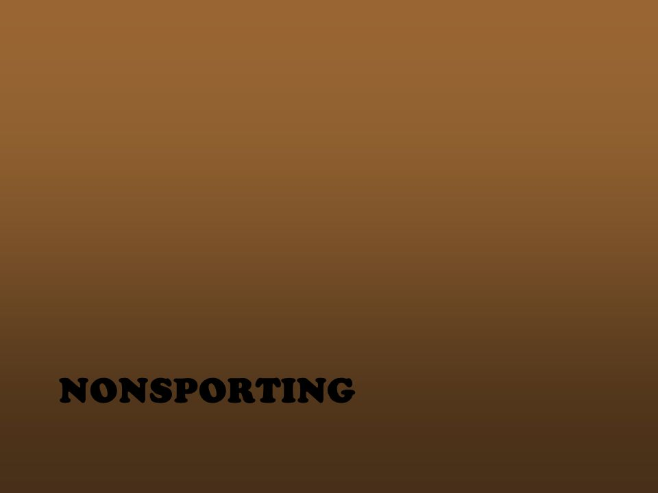 NONSPORTING