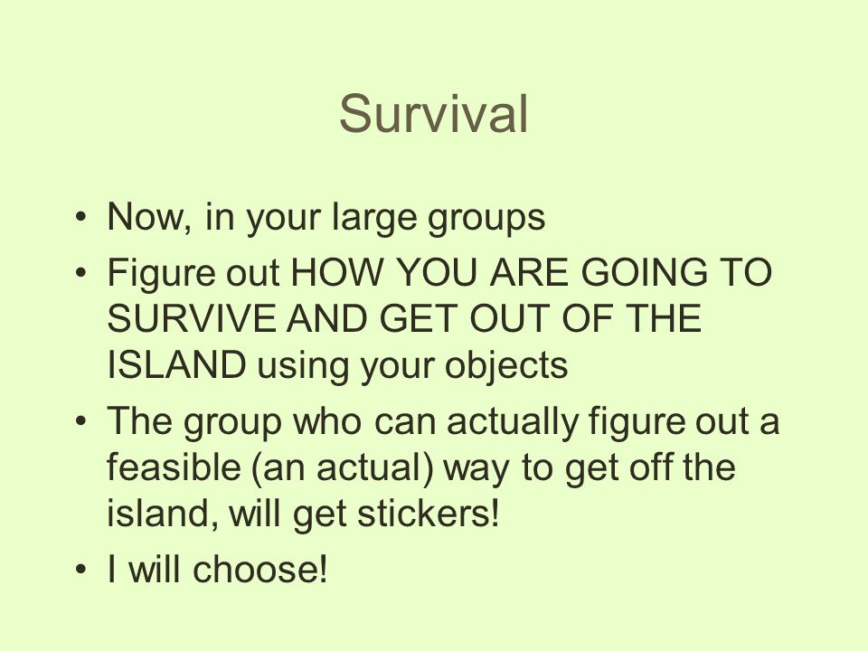 Survival Now, in your large groups Figure out HOW YOU ARE GOING TO SURVIVE AND GET OUT OF THE ISLAND using your objects The group who can actually fig