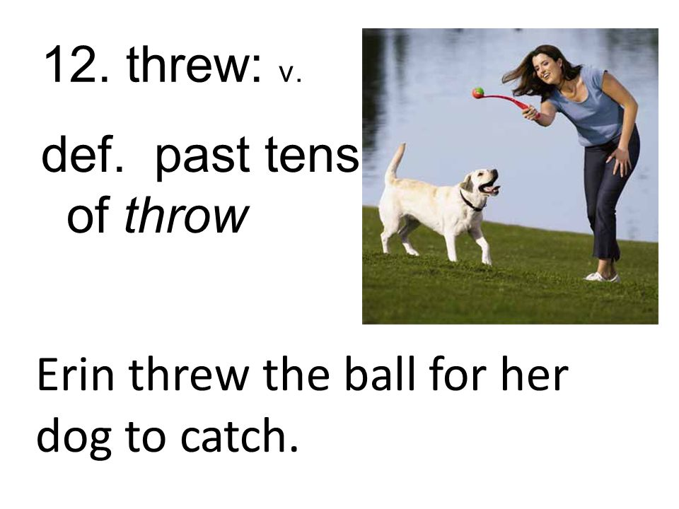 12. threw: v. def. past tense of throw Erin threw the ball for her dog to catch.