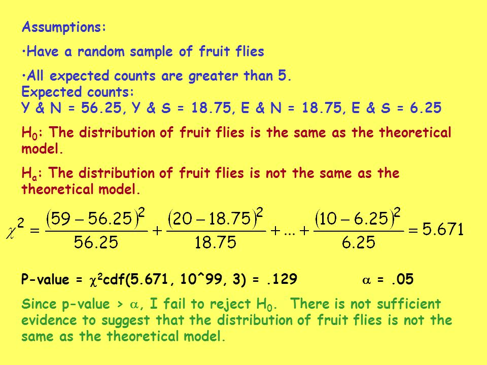 Assumptions: Have a random sample of fruit flies All expected counts are greater than 5. Expected counts: Y & N = 56.25, Y & S = 18.75, E & N = 18.75,