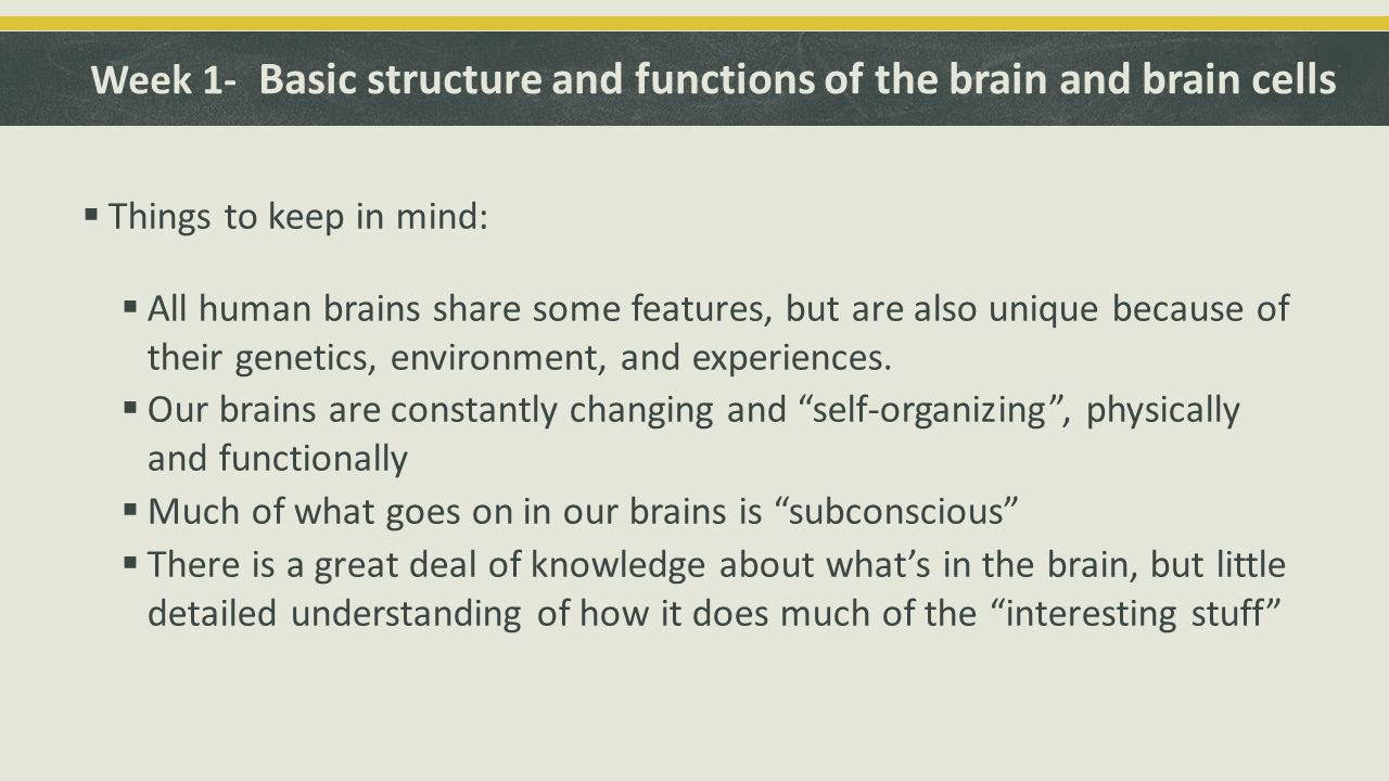 Week 1- Basic structure and functions of the brain and brain cells  Things to keep in mind:  All human brains share some features, but are also unique because of their genetics, environment, and experiences.