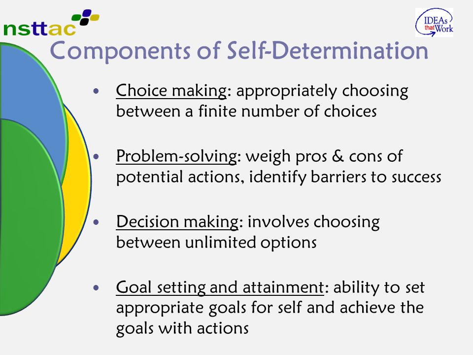 Components of Self-Determination Choice making: appropriately choosing between a finite number of choices Problem-solving: weigh pros & cons of potent