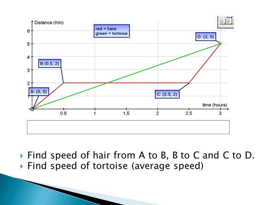  Find speed of hair from A to B, B to C and C to D.  Find speed of tortoise (average speed)