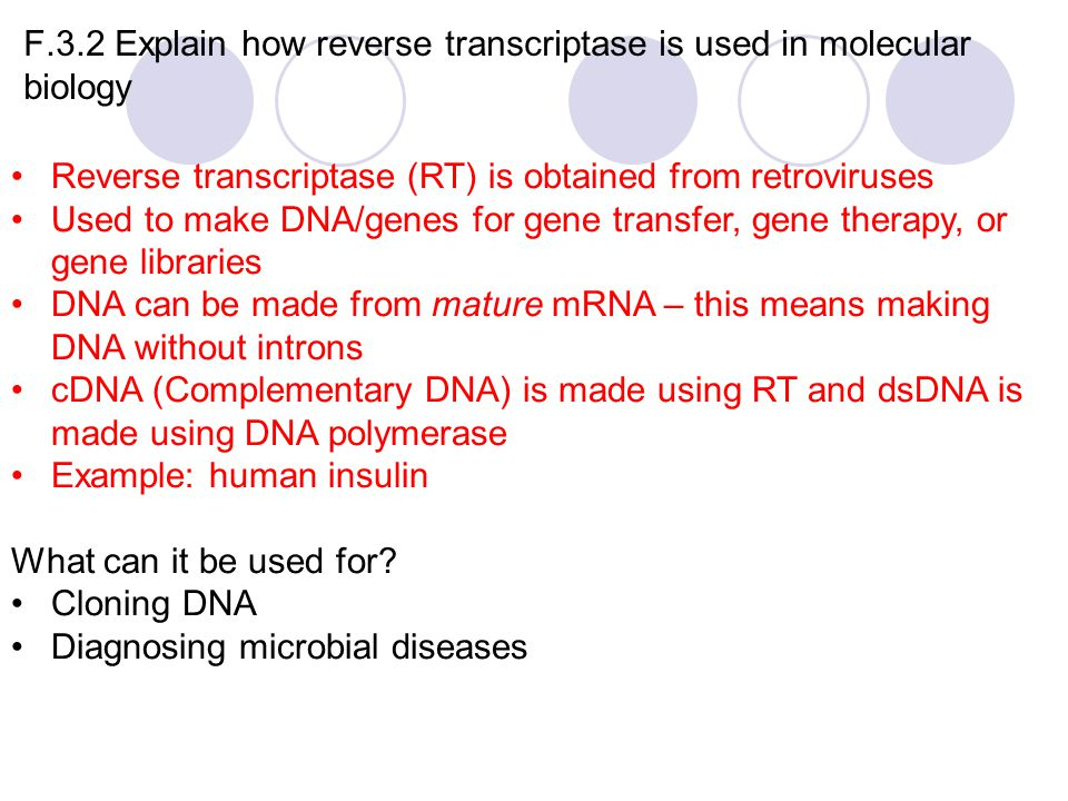 F.3.2 Explain how reverse transcriptase is used in molecular biology Reverse transcriptase (RT) is obtained from retroviruses Used to make DNA/genes for gene transfer, gene therapy, or gene libraries DNA can be made from mature mRNA – this means making DNA without introns cDNA (Complementary DNA) is made using RT and dsDNA is made using DNA polymerase Example: human insulin What can it be used for.