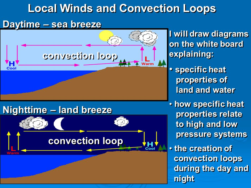 Local Winds and Convection Loops Daytime – sea breeze Nighttime – land breeze convection loop I will draw diagrams on the white board explaining: spec