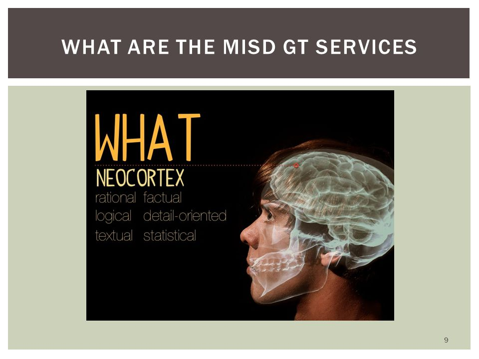 WHAT ARE THE MISD GT SERVICES 9