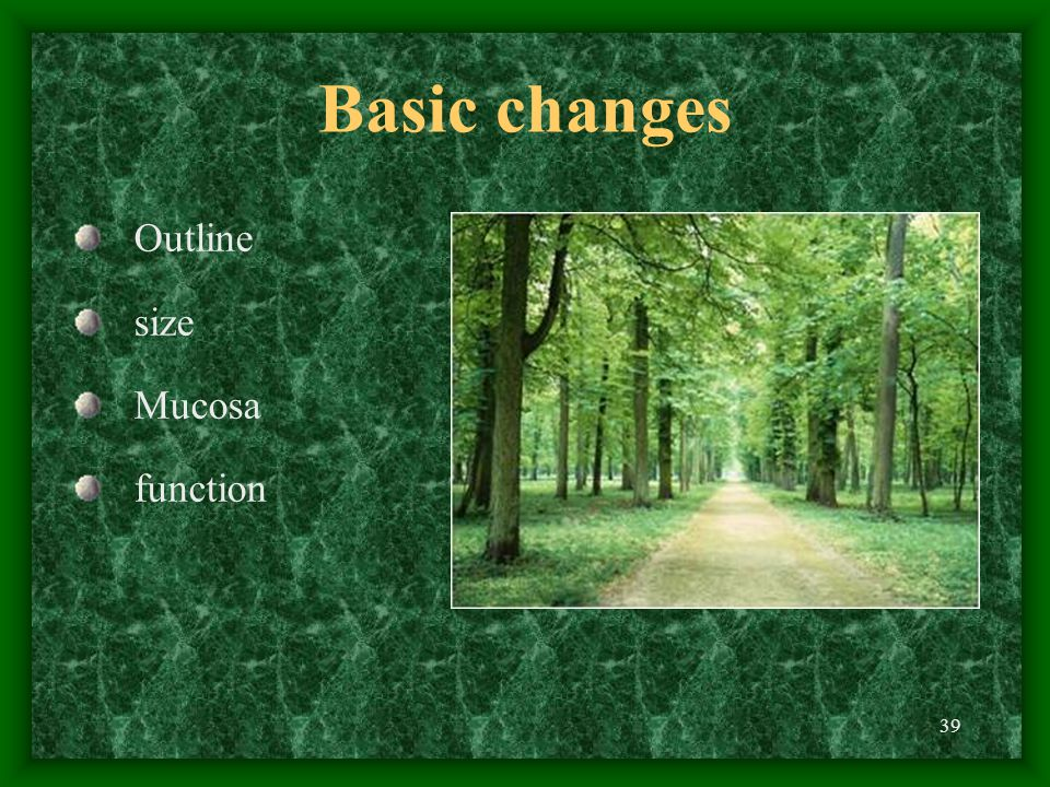 39 Basic changes Outline size Mucosa function