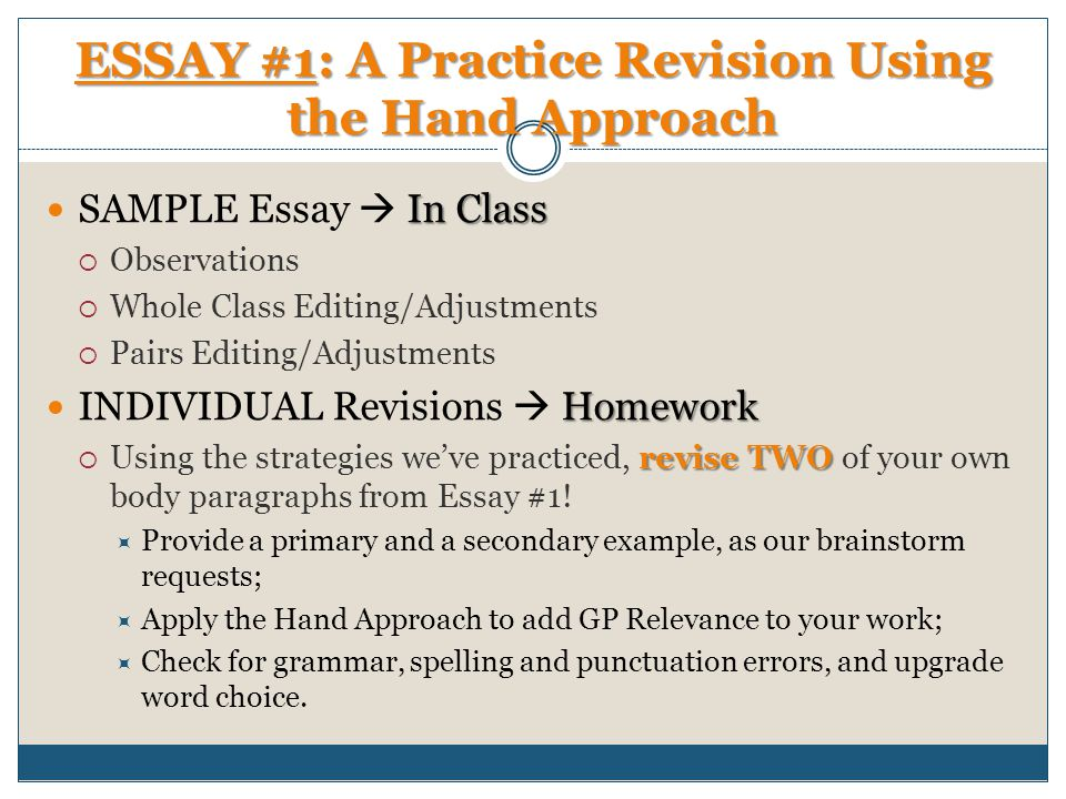 Observational Essay Examples