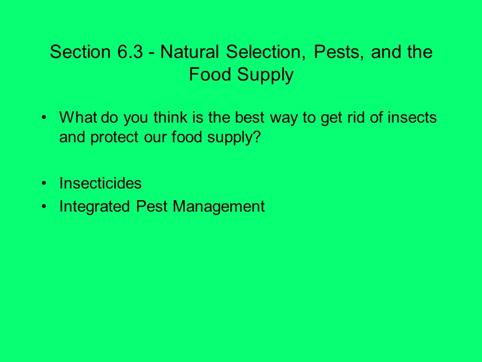 Section 6.3 - Natural Selection, Pests, and the Food Supply What do you think is the best way to get rid of insects and protect our food supply.
