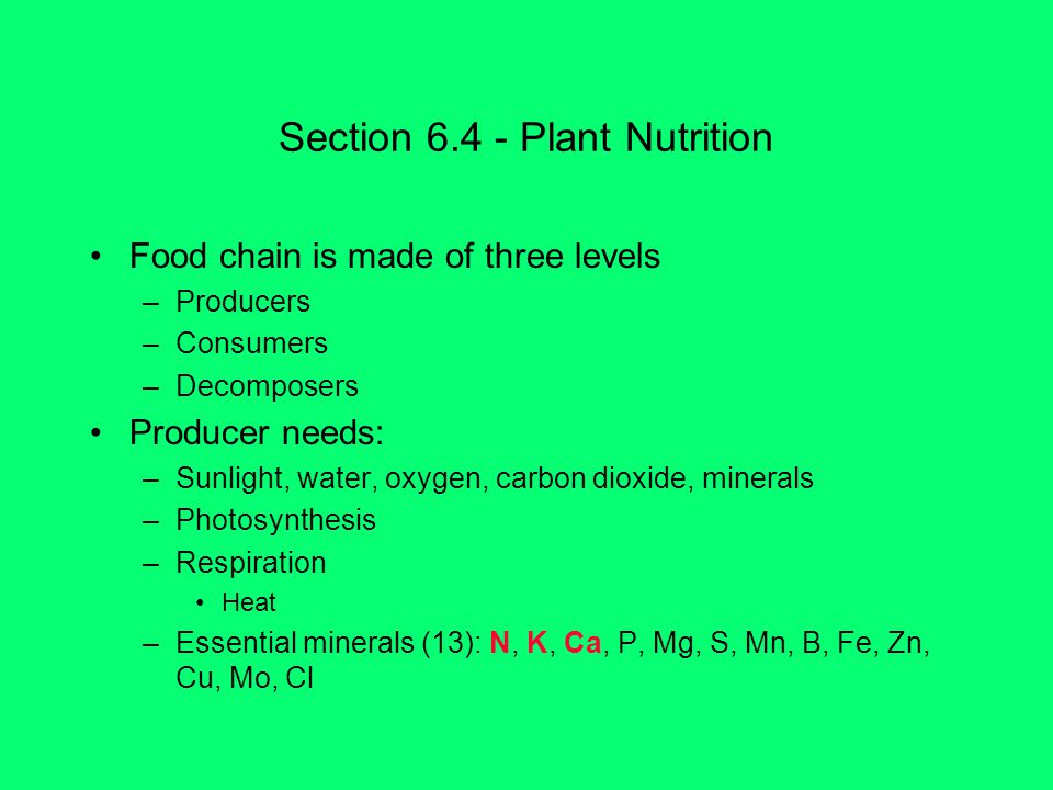 Section 6.4 - Plant Nutrition Food chain is made of three levels –Producers –Consumers –Decomposers Producer needs: –Sunlight, water, oxygen, carbon dioxide, minerals –Photosynthesis –Respiration Heat –Essential minerals (13): N, K, Ca, P, Mg, S, Mn, B, Fe, Zn, Cu, Mo, Cl