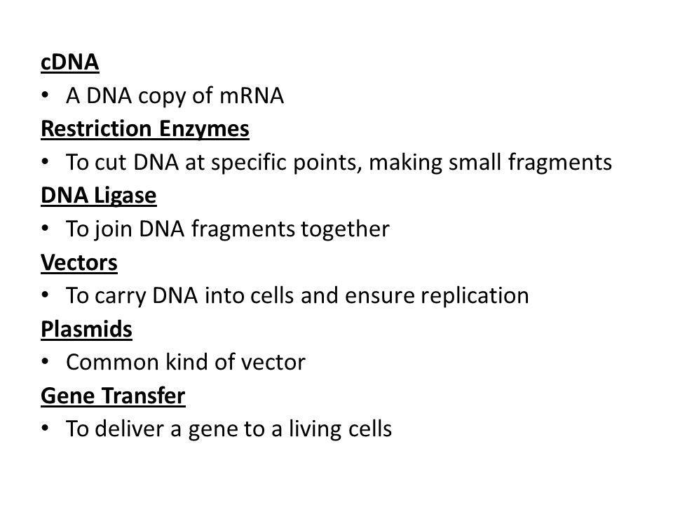 cDNA A DNA copy of mRNA Restriction Enzymes To cut DNA at specific points, making small fragments DNA Ligase To join DNA fragments together Vectors To carry DNA into cells and ensure replication Plasmids Common kind of vector Gene Transfer To deliver a gene to a living cells