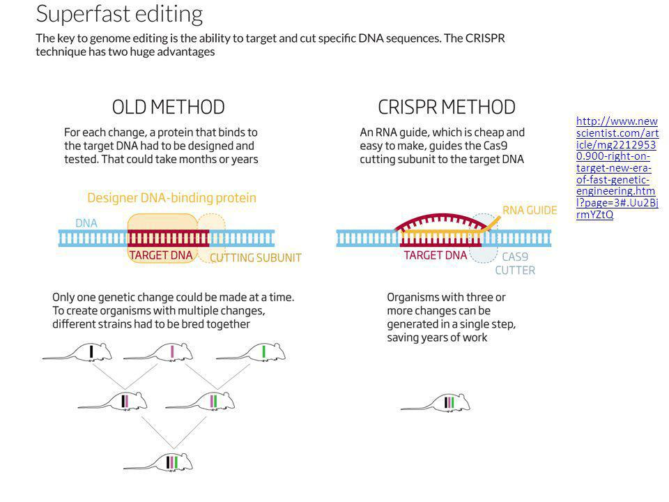 http://www.new scientist.com/art icle/mg2212953 0.900-right-on- target-new-era- of-fast-genetic- engineering.htm l?page=3#.Uu2Bj rmYZtQ http://www.new scientist.com/art icle/mg2212953 0.900-right-on- target-new-era- of-fast-genetic- engineering.htm l?page=3#.Uu2Bj rmYZtQ