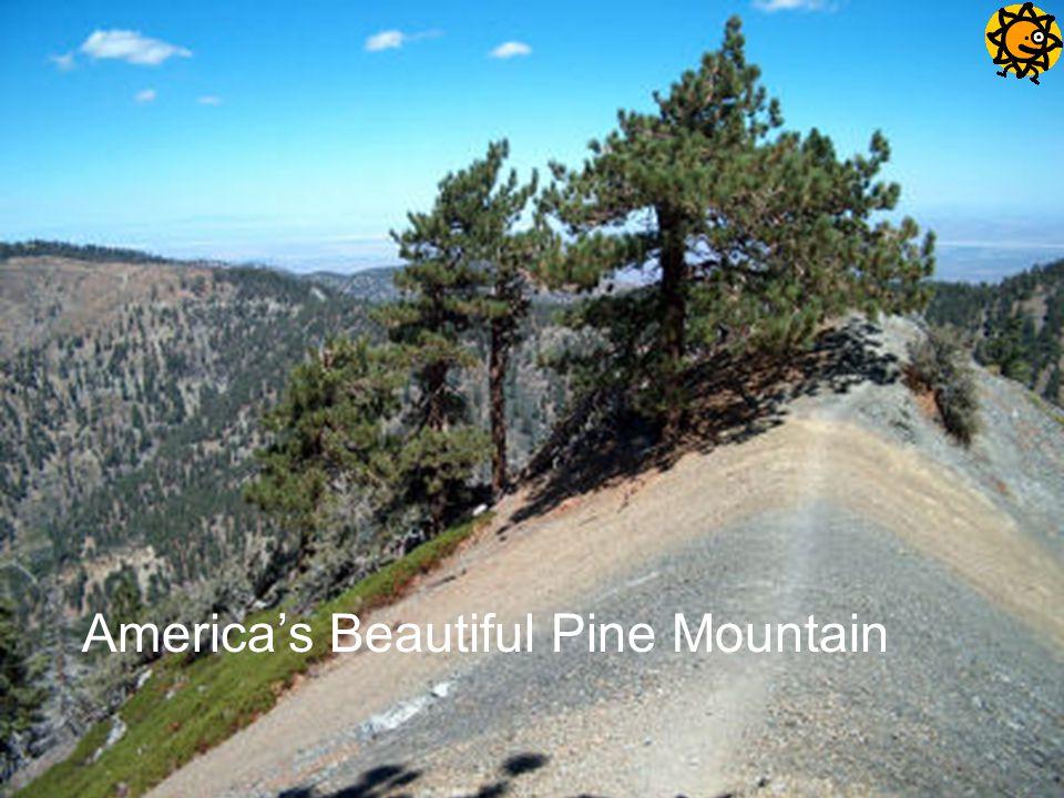 America's Beautiful Pine Mountain
