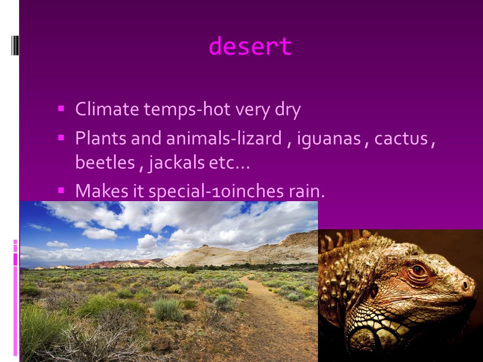 desert  Climate temps-hot very dry  Plants and animals-lizard, iguanas, cactus, beetles, jackals etc…  Makes it special-10inches rain.