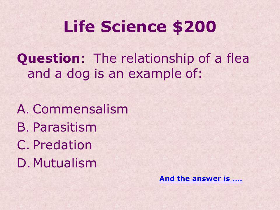 Life Science $200 Question: The relationship of a flea and a dog is an example of: A.Commensalism B.Parasitism C.Predation D.Mutualism And the answer is ….