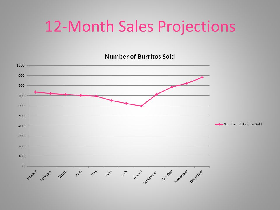 12-Month Sales Projections