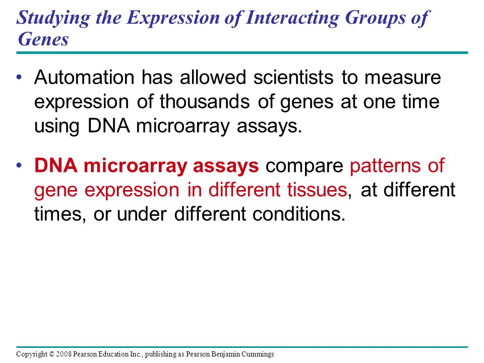 Copyright © 2008 Pearson Education Inc., publishing as Pearson Benjamin Cummings Studying the Expression of Interacting Groups of Genes Automation has