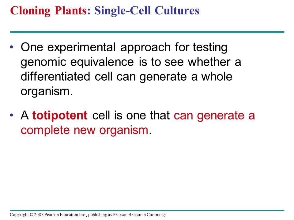 Copyright © 2008 Pearson Education Inc., publishing as Pearson Benjamin Cummings Cloning Plants: Single-Cell Cultures One experimental approach for te