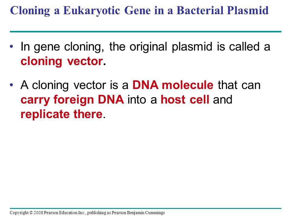 Copyright © 2008 Pearson Education Inc., publishing as Pearson Benjamin Cummings Cloning a Eukaryotic Gene in a Bacterial Plasmid In gene cloning, the