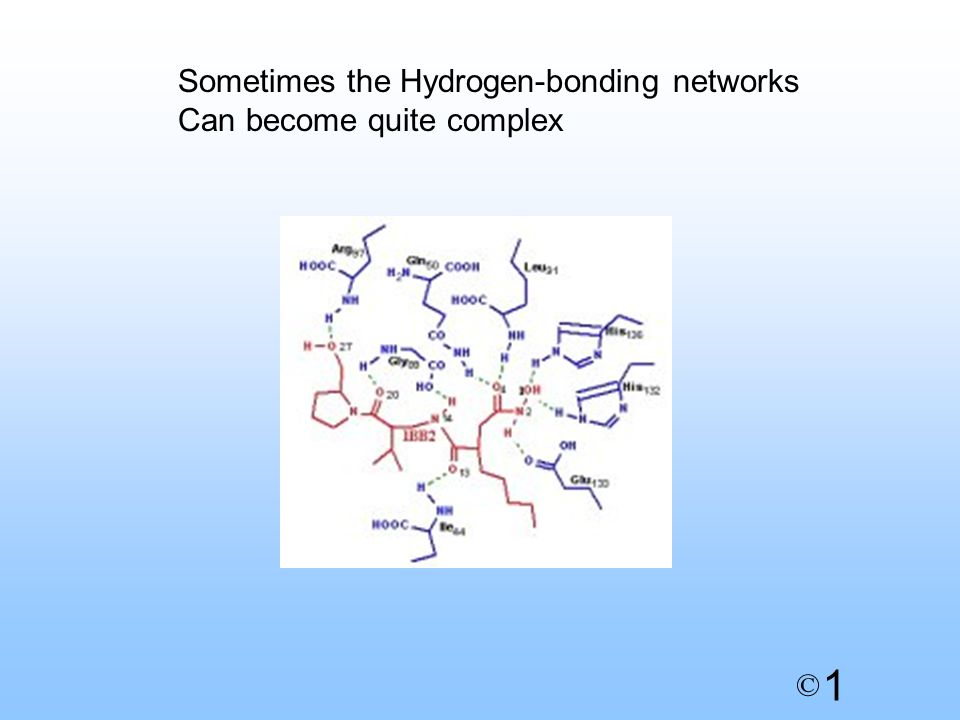 1 © Sometimes the Hydrogen-bonding networks Can become quite complex