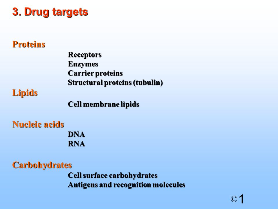 1 © Proteins Receptors Enzymes Carrier proteins Structural proteins (tubulin) Lipids Cell membrane lipids Nucleic acids DNA RNA Carbohydrates Cell surface carbohydrates Antigens and recognition molecules 3.