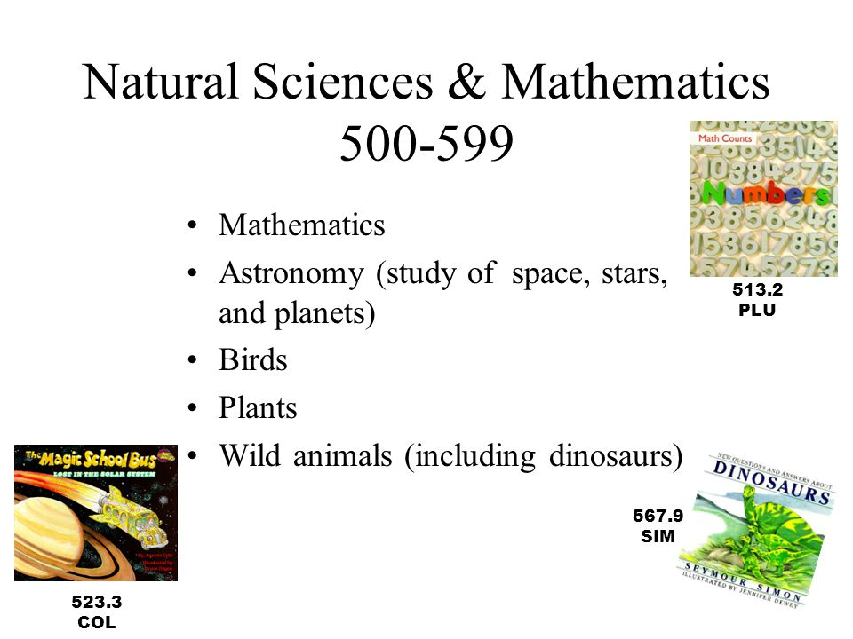 Natural Sciences & Mathematics 500-599 Mathematics Astronomy (study of space, stars, and planets) Birds Plants Wild animals (including dinosaurs) 513.